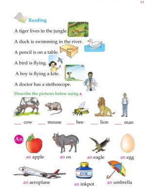 1st Grade Grammar Articles 2