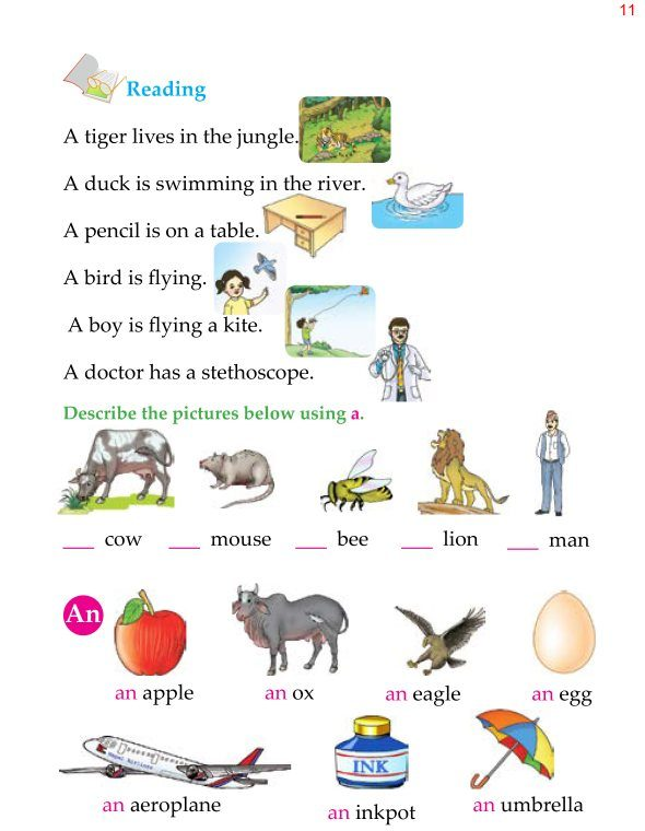 1st Grade Grammar Articles 2