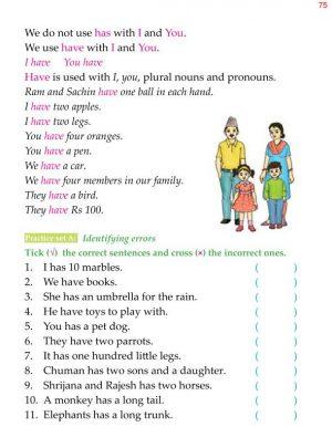 1st Grade Grammar Possessive Verbs Has Have 2