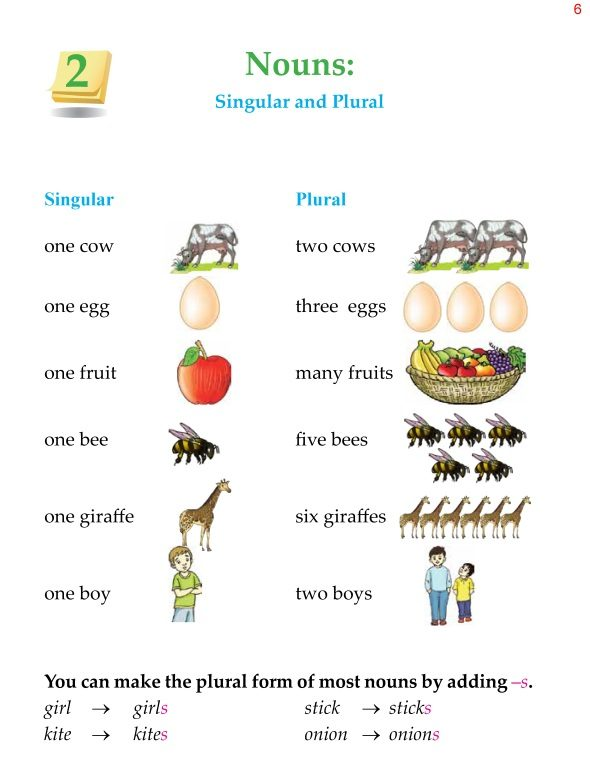 2nd Grade Grammar Nouns Singular and Plural