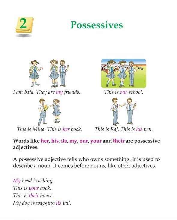 3rd Grade Grammar Possessives
