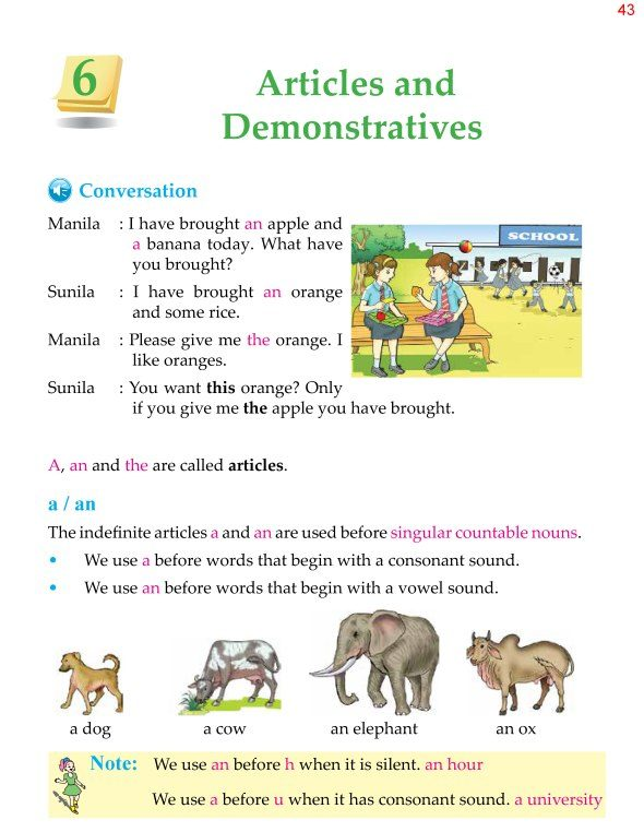 4th Grade Grammar Unit 6 Articles and Demonstratives 1