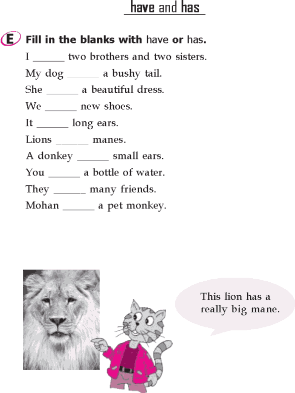 Grade 1 Grammar Lesson 15 Verbs - have and has (3)