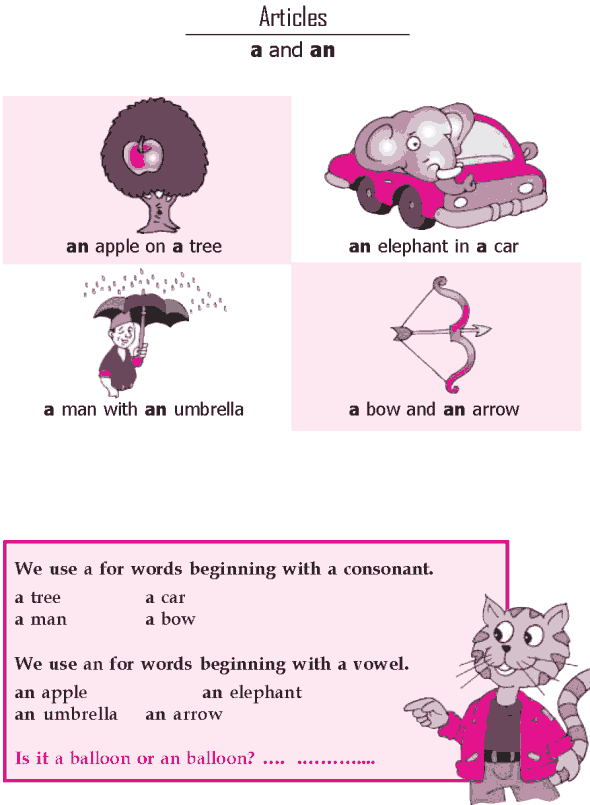 Grade 1 Grammar Lesson 6 Articles - a and an(0)