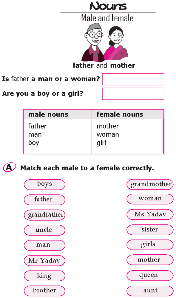 Grade 1 Grammar Lesson 8 Nouns - Male and female