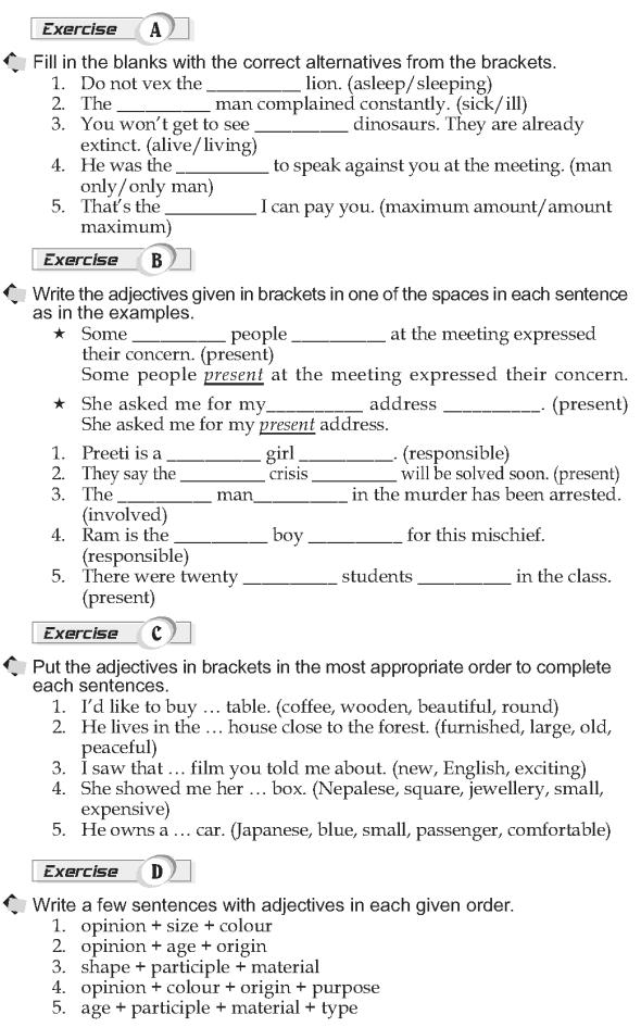 Grade 10 Grammar Lesson 19 Adjectives position (2)