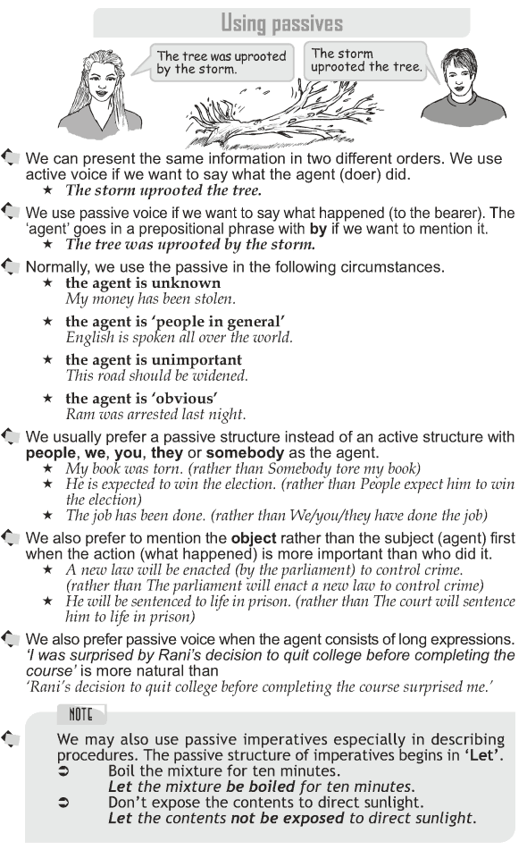 Grade 10 Grammar Lesson 34 Using passives (1)