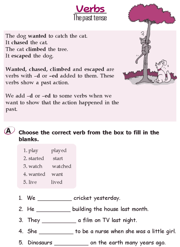 Grade 2 Grammar Lesson 14 Verbs - The future tense (1)