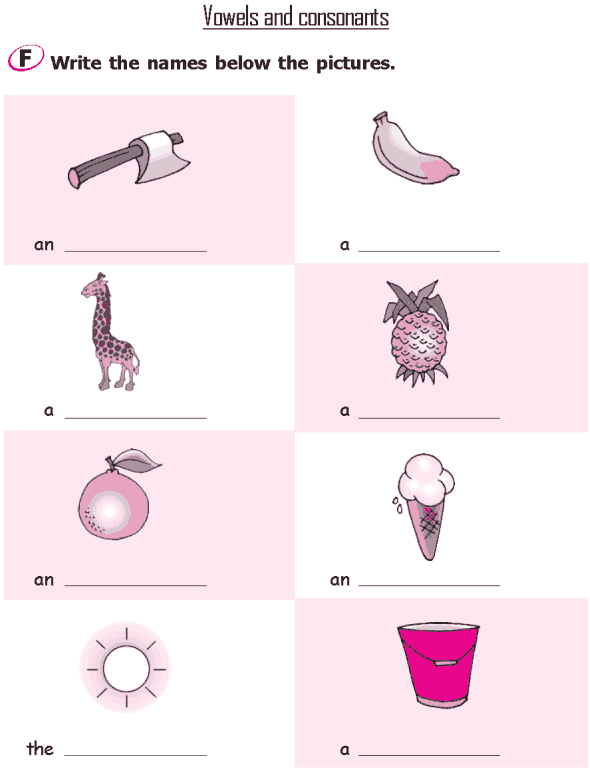 Grade 2 Grammar Lesson 2 The alphabet - Vowels and consonants (4)