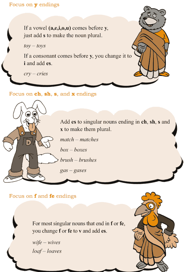 Grade 3 Grammar Lesson 2 Nouns - singular and plural (3)