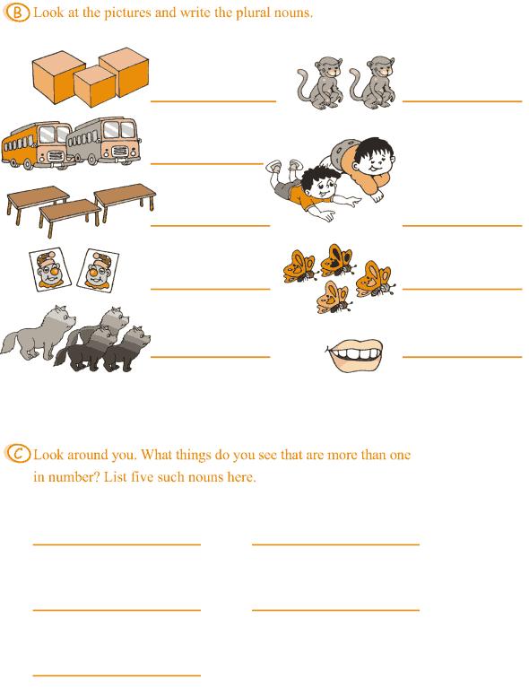 Grade 3 Grammar Lesson 2 Nouns - singular and plural (6)