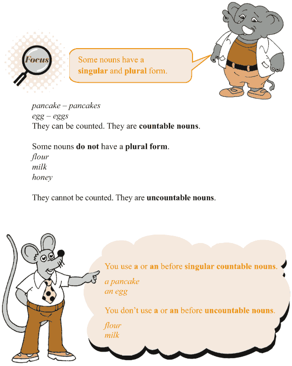 Grade 3 Grammar Lesson 3 Nouns - countable and uncountable (2)