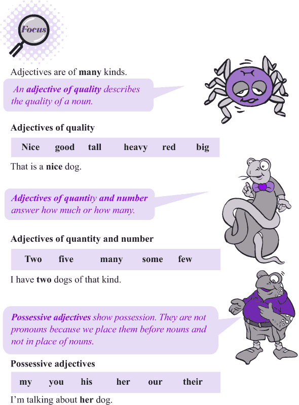 Grade 4 Grammar Lesson 10 Kinds of adjectives (2)