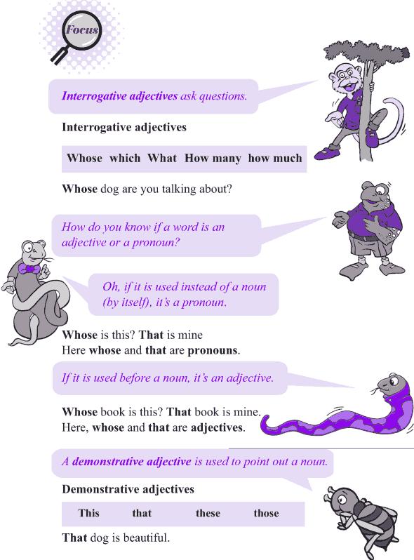 Grade 4 Grammar Lesson 10 Kinds of adjectives (3)