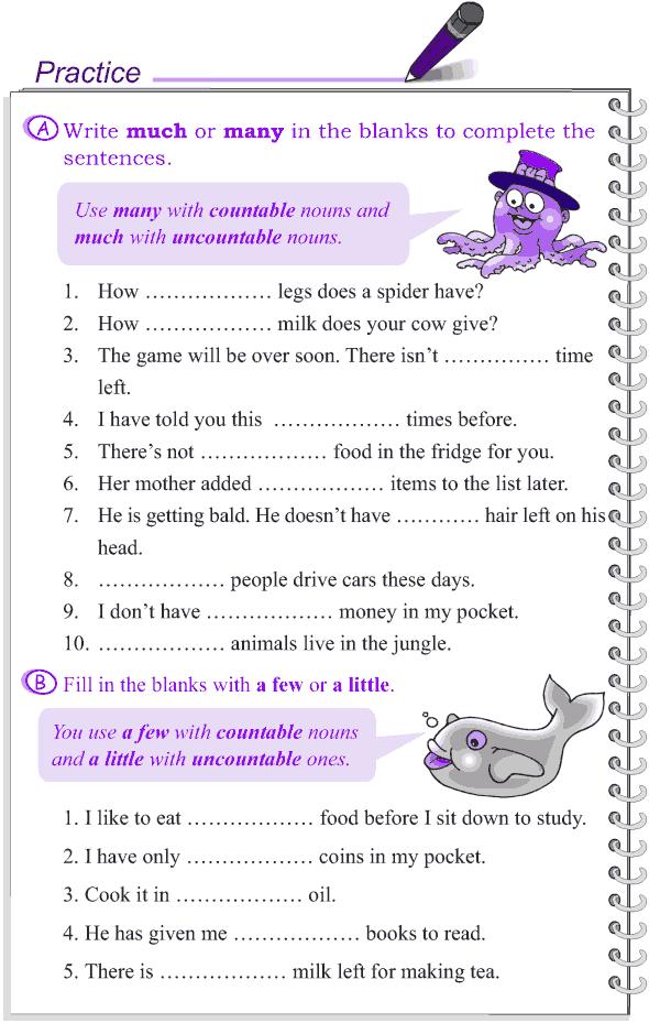 Grade 4 Grammar Lesson 14 Determiners (2)