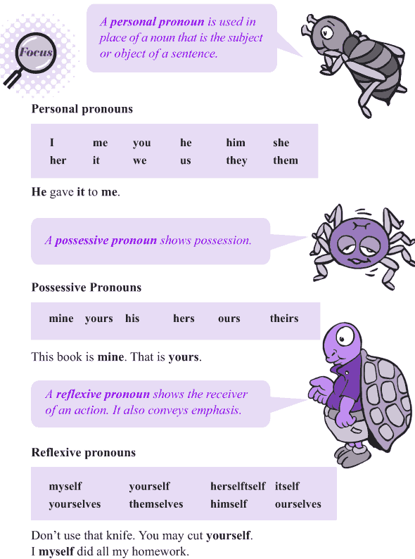 Grade 4 Grammar Lesson 8 Kinds of pronouns (2)
