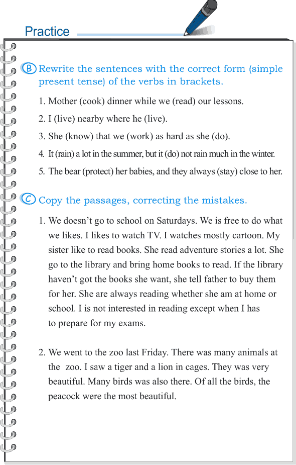 Grade 5 Grammar Lesson 2 Subject-verb agreement (3)