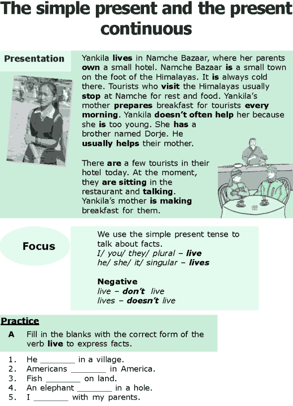 Grade 6 Grammar Lesson 1 The simple present and the present continuous (0)