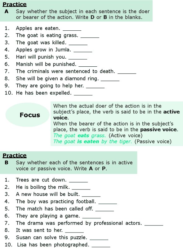 Grade 6 Grammar Lesson 11 Active and passive voice (1)