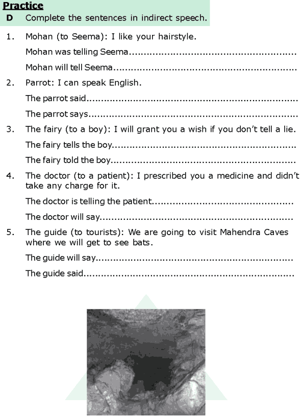 Grade 6 Grammar Lesson 13 Direct and indirect speech (4)
