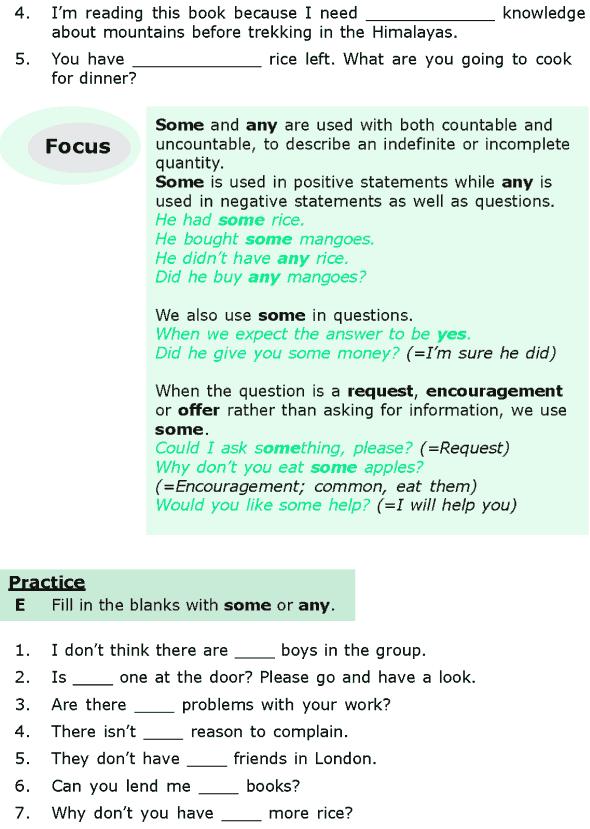 Grade 6 Grammar Lesson 16 Quantifiers (3)