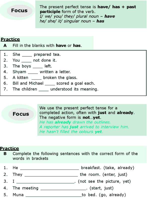 Grade 6 Grammar Lesson 2 The present perfect and the present perfect continuous (1)