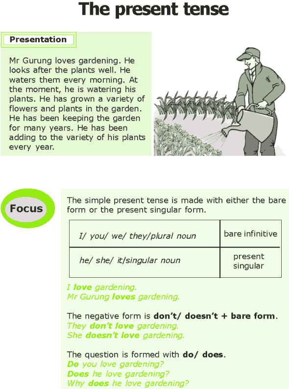 Grade 7 Grammar Lesson 1 The present tense