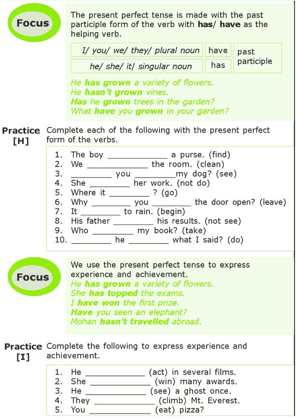 Grade 7 Grammar Lesson 1 The present tense (5)