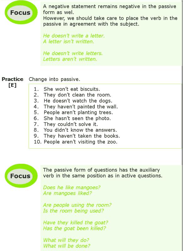 Grade 7 Grammar Lesson 6 The passive voice (4)