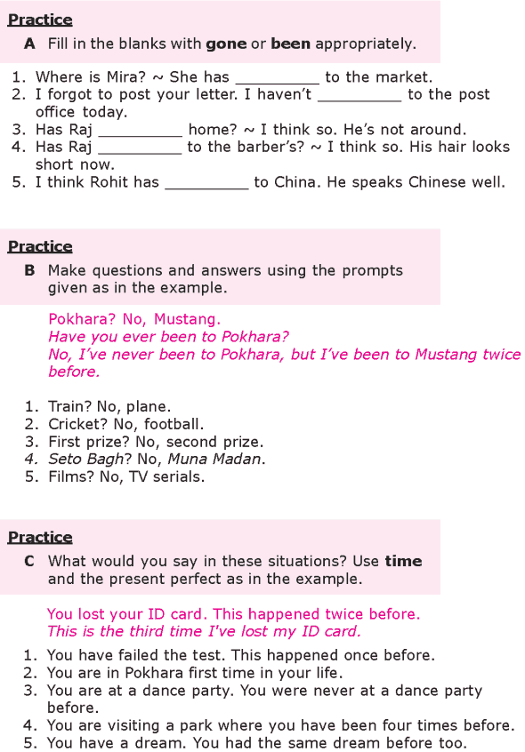 Grade 8 Grammar Lesson 6 The present perfect tense (1)