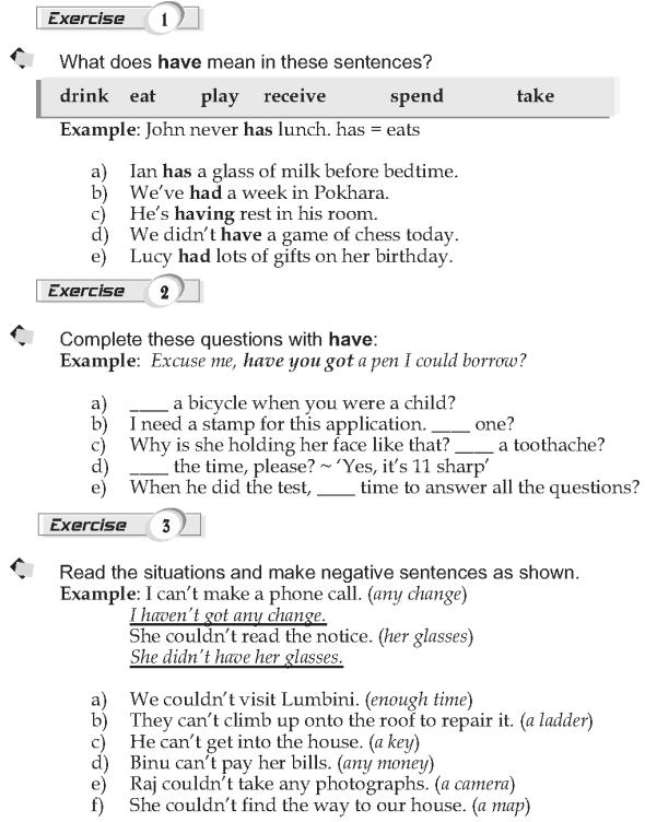 Grade 9 Grammar Lesson 17 The verb 'have' (2)