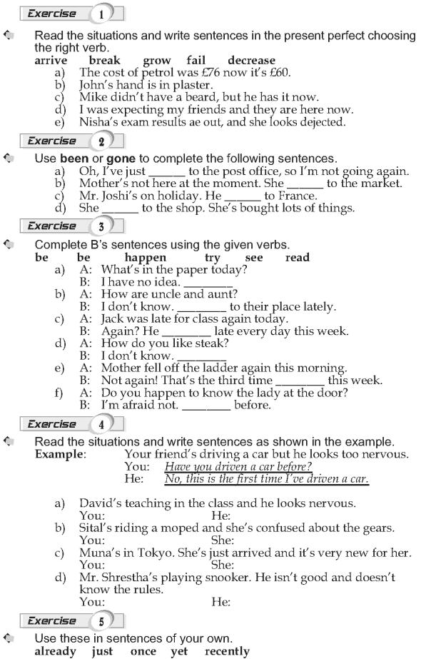 Grade 9 Grammar Lesson 8 Present perfect (2)