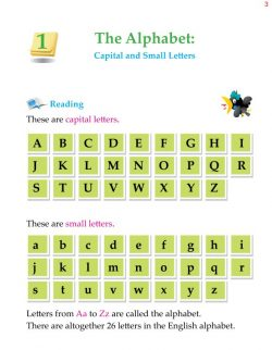 1st Grade Grammar The Alphabet Capital and Small Letters (1).jpg