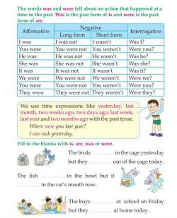 3rd Grade Grammar Past Tense Was and Were (2).jpg