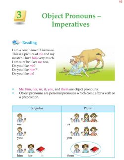4th Grade Grammar Unit 3 Object Pronouns and Imperatives 1.jpg