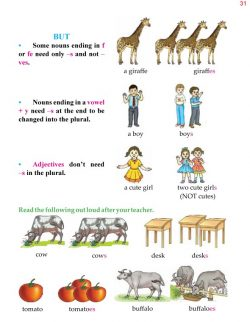4th Grade Grammar Unit 5 Plurals - Countable and Uncountable Nouns 4.jpg