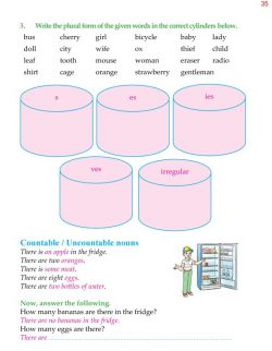 4th Grade Grammar Unit 5 Plurals - Countable and Uncountable Nouns 8.jpg