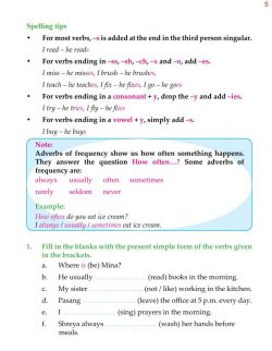 5th Grade Grammar Present Simple - Present Continuous 6.jpg
