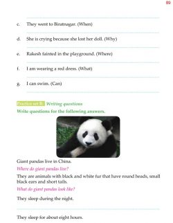 5th Grade Grammar Questions - Question Words - Question 6.jpg